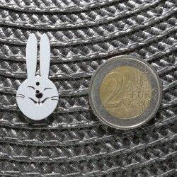 bouton lapin ne bois comparatif pièce deux euros